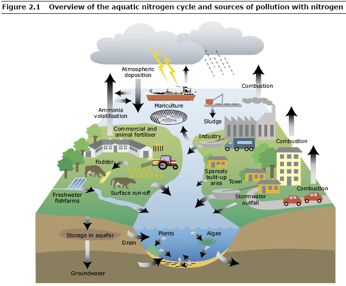 Sources of pollution for Soil and water facts