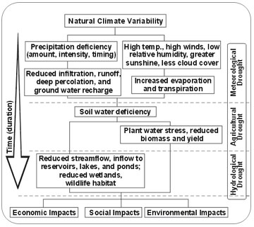 Drought-impacts