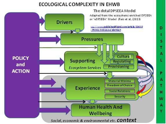 Ecological Complexity in EHWB