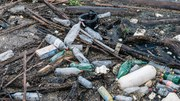 Prevention is crucial to tackling plastic waste crisis