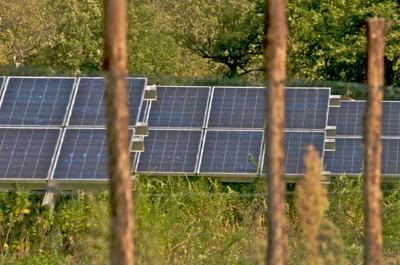 Carbon Farmers 4.jpg