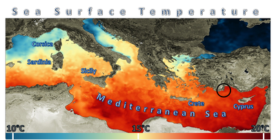 Turkey Sea surface temperature (SST)