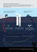 Изменението на климата и моретата