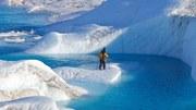 Tání arktického ledu
