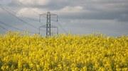 Při výrobě bioenergie je nutné využívat zdroje efektivně