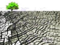Hvis brønden tørrer ud - Tilpasning til klimaændringer og vand