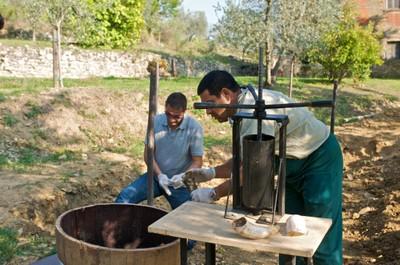 Spredning af kompost