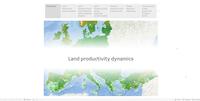 Land productivity dynamics