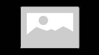 2015 shapefile — European Environment Agency