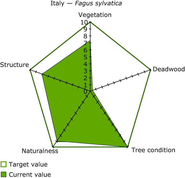 https://www.eea.europa.eu/data-and-maps/figures/an-example-of-presenting-the-forest-status-indicator-beech-forest-in-italy/figure-5-7-european-forests.eps/image_large