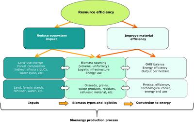 Assessing the environmental performance of bioenergy