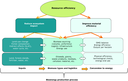 Assessing the environmental performance of bioenergy