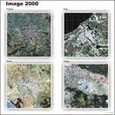 Corine land cover in European capitals