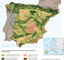 Corridors of variable width between the Natura 2000 woodland sites in mainland Spain