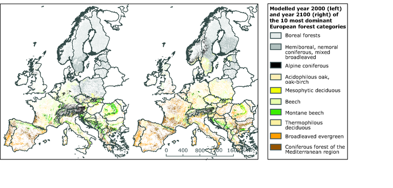 http://www.eea.europa.eu/data-and-maps/figures/current-2000-and-projected-2100-forest-coverage-in-europe/map-5-43-climate-change-2008-current-and-projected-forest-coverage.eps/image_large