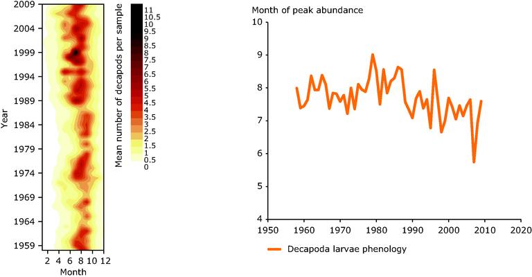 https://www.eea.europa.eu/data-and-maps/figures/decapoda-larvae-abundance-and-phenology/fig-3.4-decapoda.eps/image_large