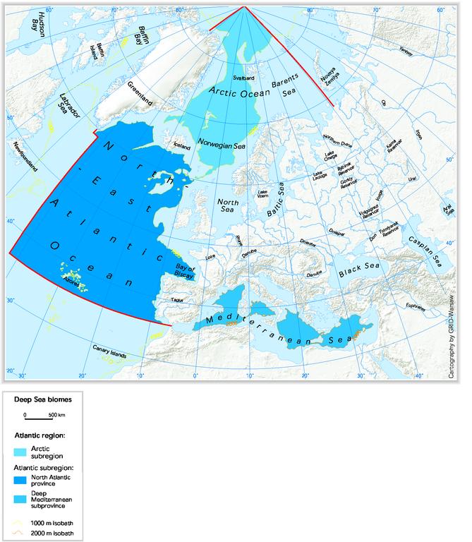 https://www.eea.europa.eu/data-and-maps/figures/deep-sea-biomes/i4_deep.eps/image_large