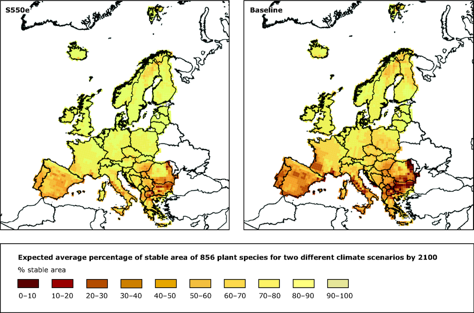 Expected average percentage of stable area of 856 plant species for two different climate scenarios