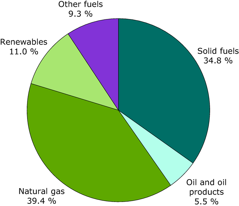 http://www.eea.europa.eu/data-and-maps/figures/fuel-input-to-chp-plants-3/ener20_fig_02a/image_large
