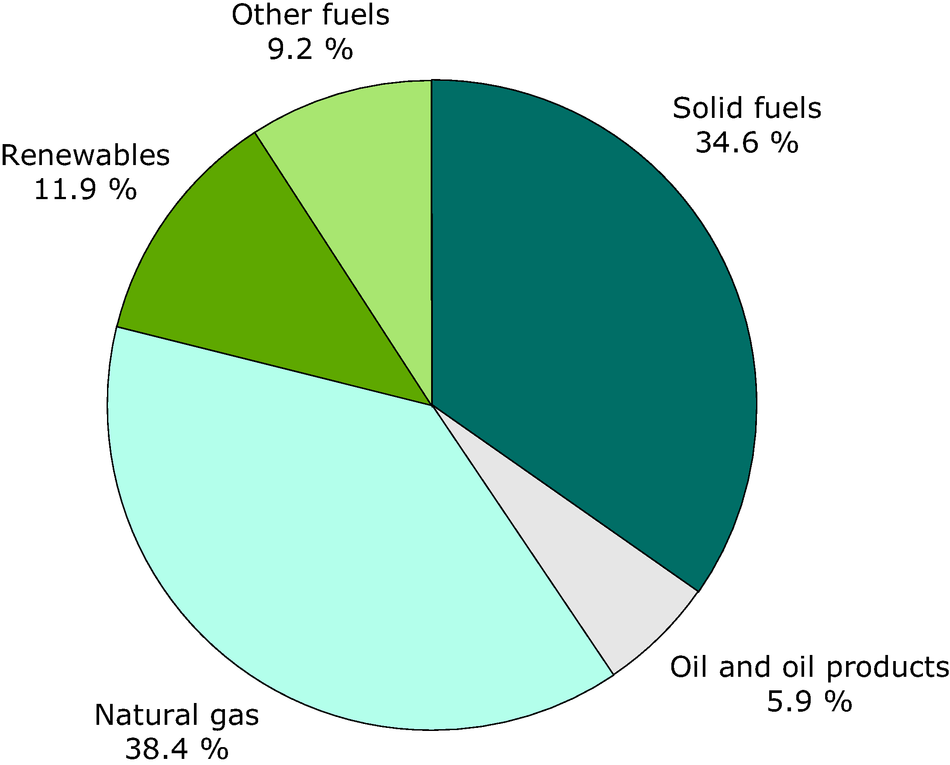 Fuel input to CHP plants in the EU-27 in 2007