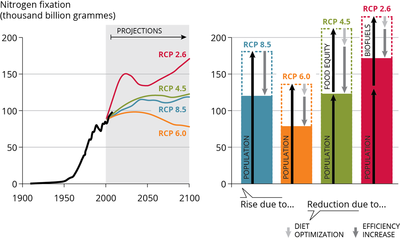 Historical trend in global agricultural demand for industrial nitrogen fertiliser 1910-2008, projections to 2100 based on RCP scenarios; and drivers of the projected changes in demand in 2100