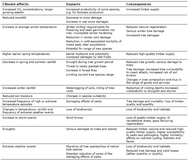 Impacts and consequences of climate change on forest growth and forest conditions