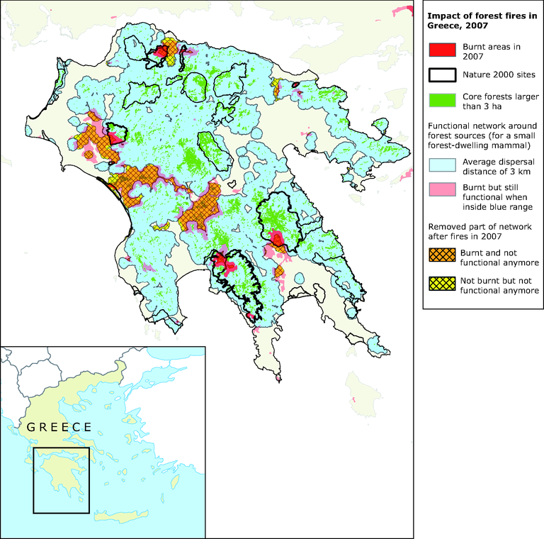 http://www.eea.europa.eu/data-and-maps/figures/impacts-of-fires-in-2007-on-the-functional-territory-for-forest-dwelling-mammal-species-occurring-in-the-peloponnese/map-4-2-european-forests-5.eps/image_large