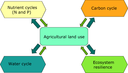 Land use and ecosystem cycles