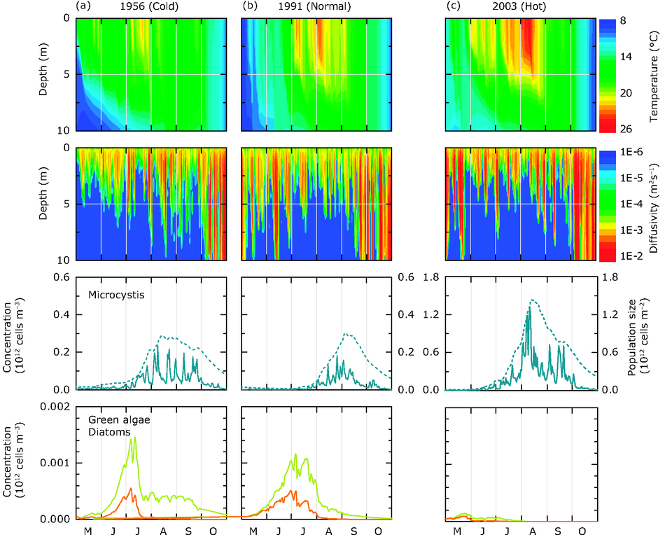 Model simulation of hydrodynamics and phytoplankton dynamics during three contrasting summers in Lake Nieuwe Meer (the Netherlands)