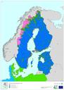 Boreal region