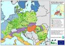 Continental biogeographical region