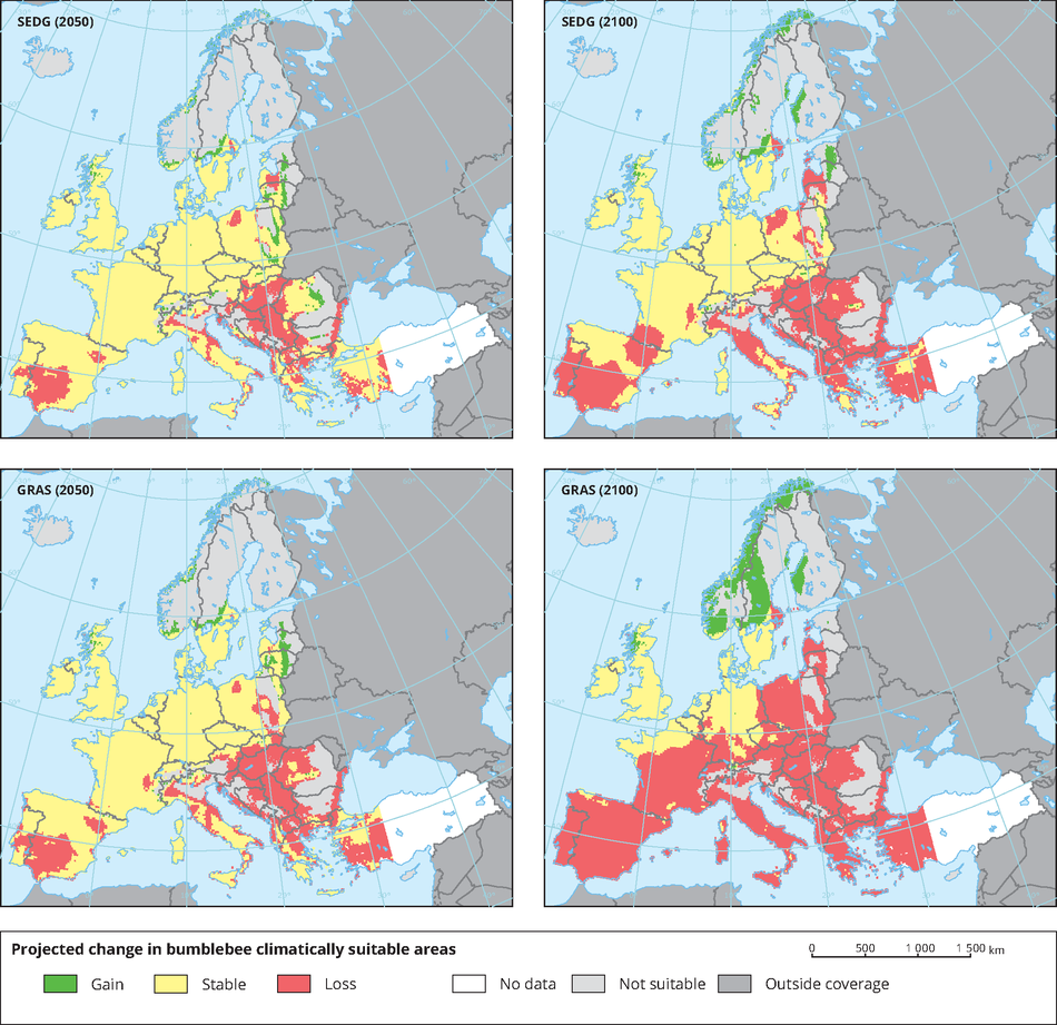 Projected change in Bumblebee climatically suitable areas