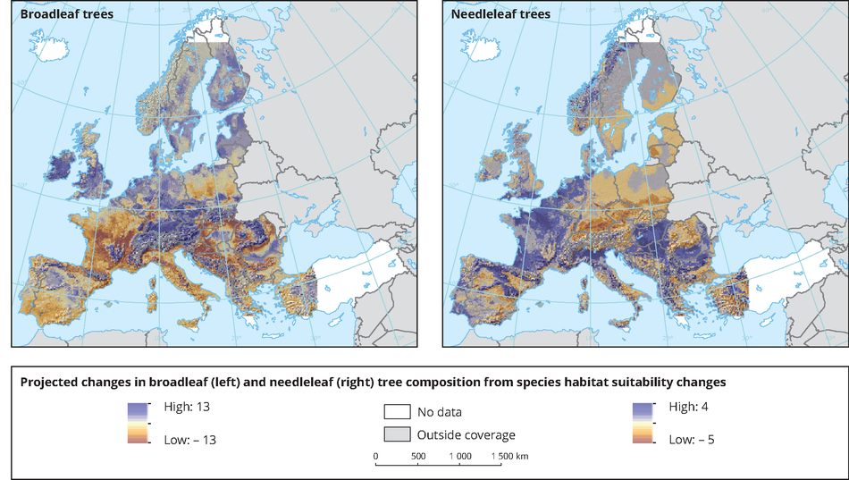 Projected changes in climatic suitability for broadleaf and needleleaf trees