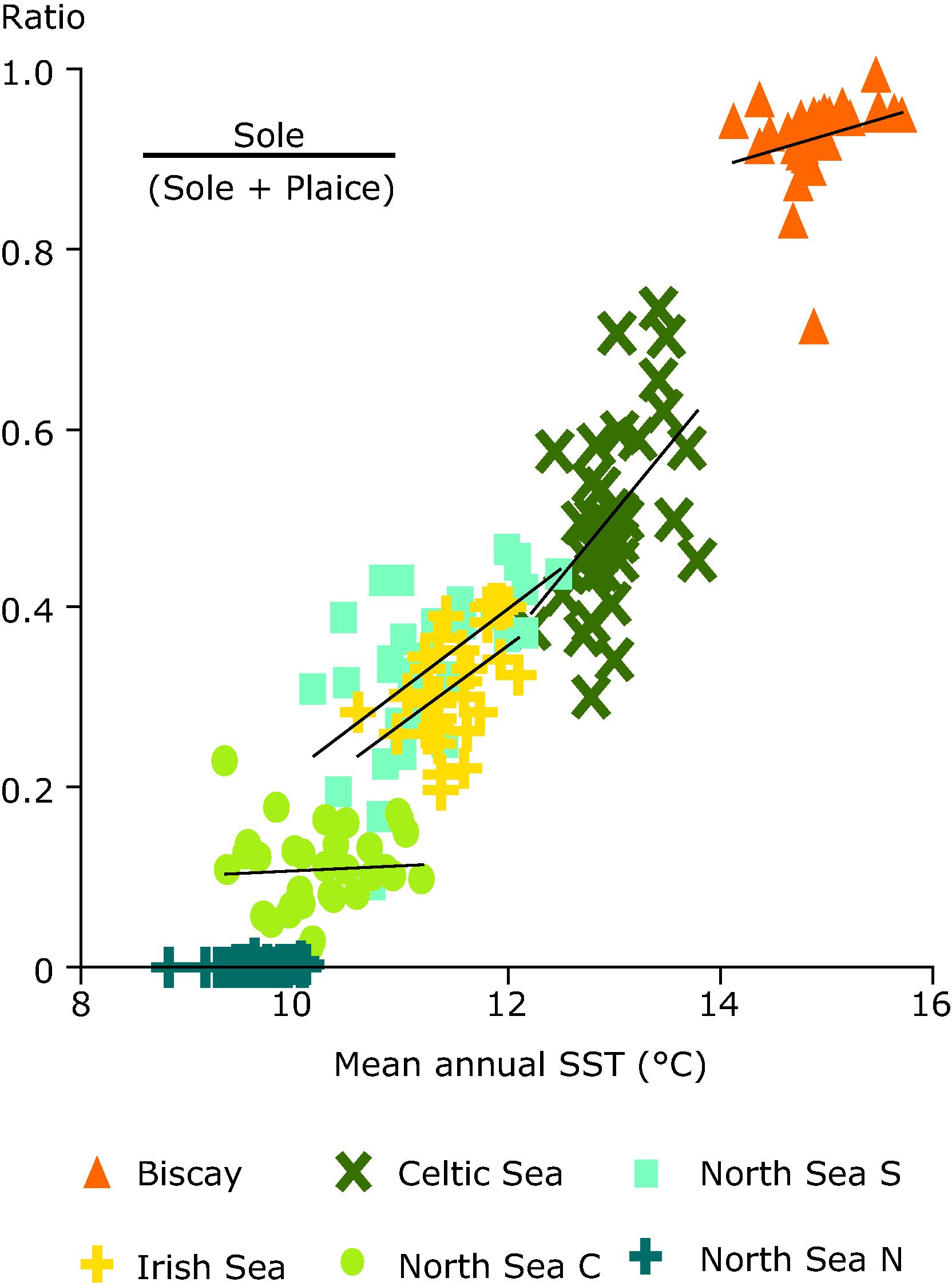 Relative abundance of warm-water to cold-water flatfish species