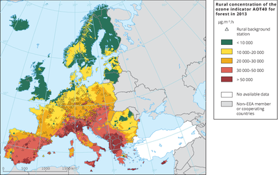 Rural concentration of the ozone indicator AOT40 for forest