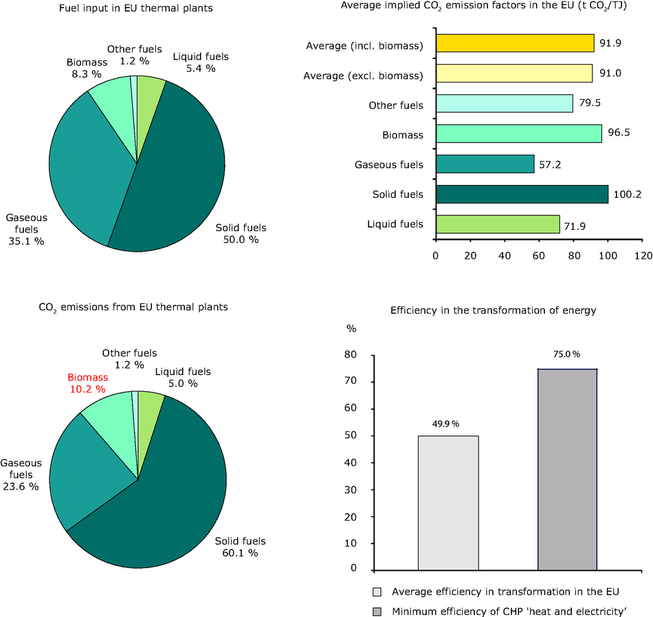 Energy Efficiency In Transformation European Environment Agency Electricity Agricultural Structures Structure Of Co2 Emissions From Thermal Power Plants Eu 27 2009