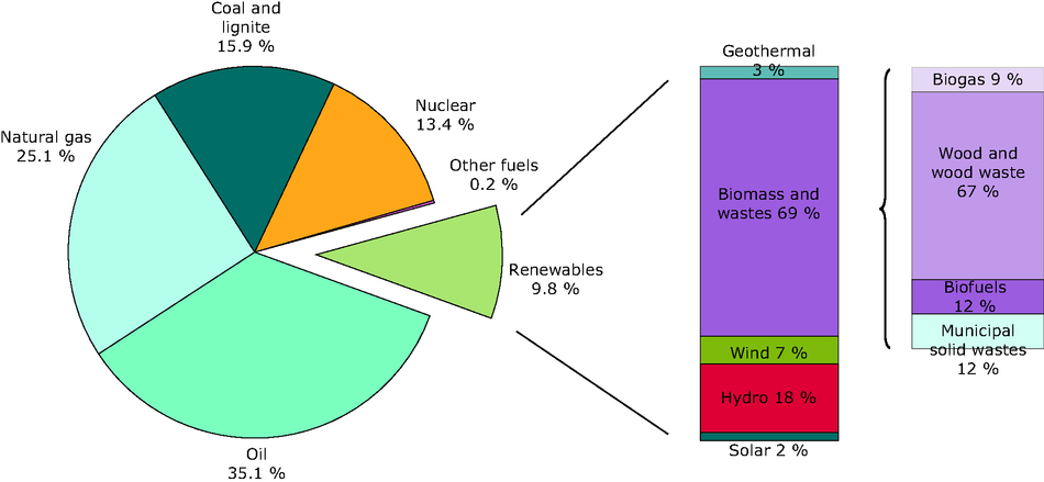 Total primary energy consumption by energy source in 2010