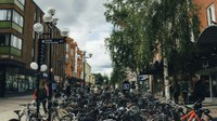 Mit dem neuen Anzeiger zur Luftqualität in europäischen Städten können Sie Langzeitkonzentrationen von Luftschadstoffen an Ihrem Wohnort sehen
