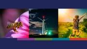 Die Umwelt in Europa 2015: Künftiger Wohlstand benötigt mutigere Maßnahmen für Politik, Wissen, Investitionen und Innovationen