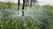 Europa muss Wasser effizienter nutzen