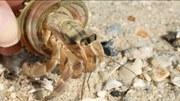Nahaufnahme – Ein Meer von Kunststoffen