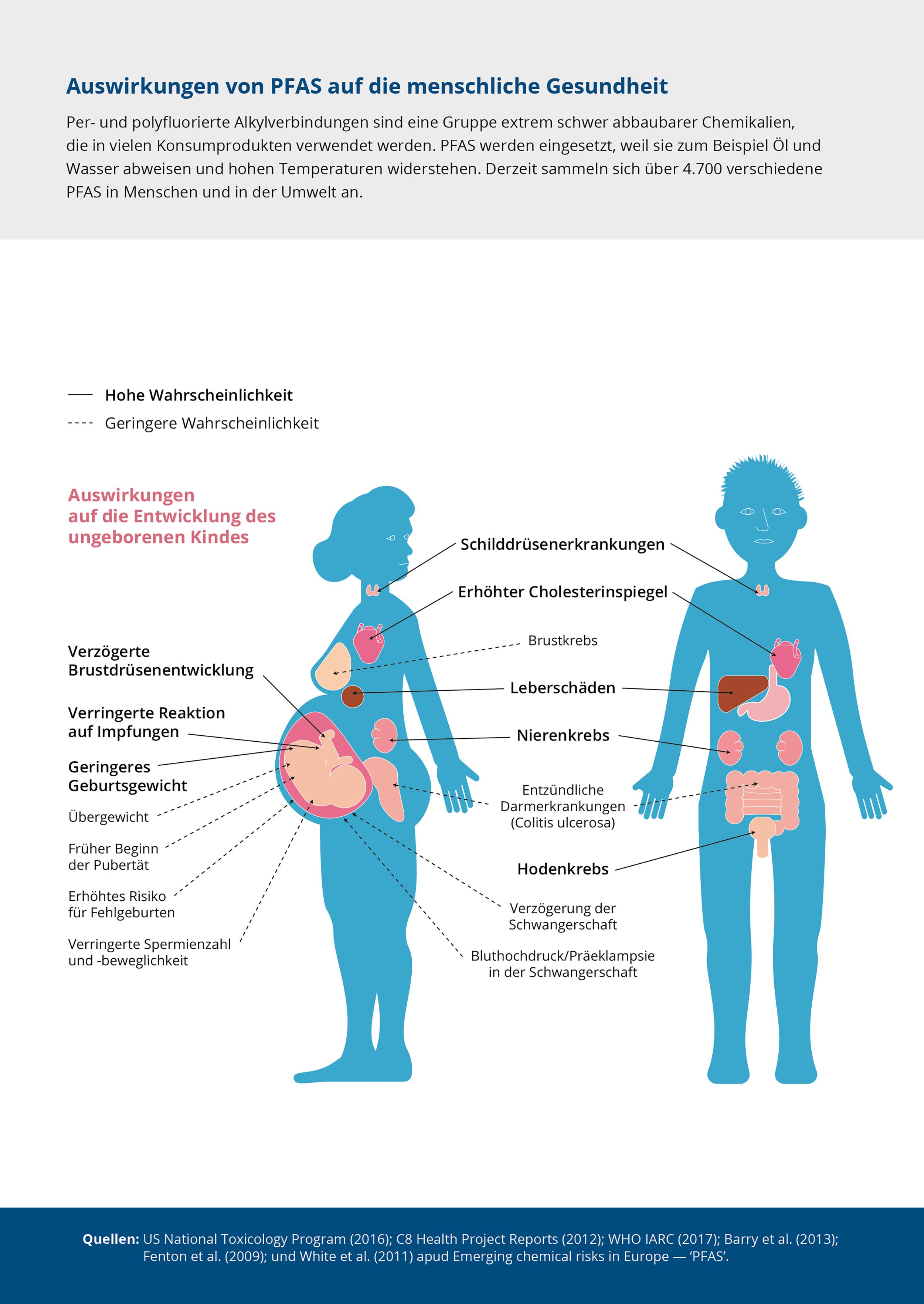 Auswirkungen von PFAS auf die menschliche Gesundheit