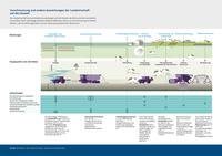 Verschmutzung und andere Auswirkungen der Landwirtschaft auf die Umwelt