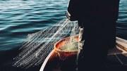 Υδράργυρος: διαρκής απειλή για το περιβάλλον και την ανθρώπινη υγεία