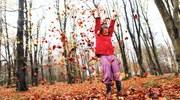 Διε θνές Έτος Δασών: τα δάση γι α τους ανθρώπους