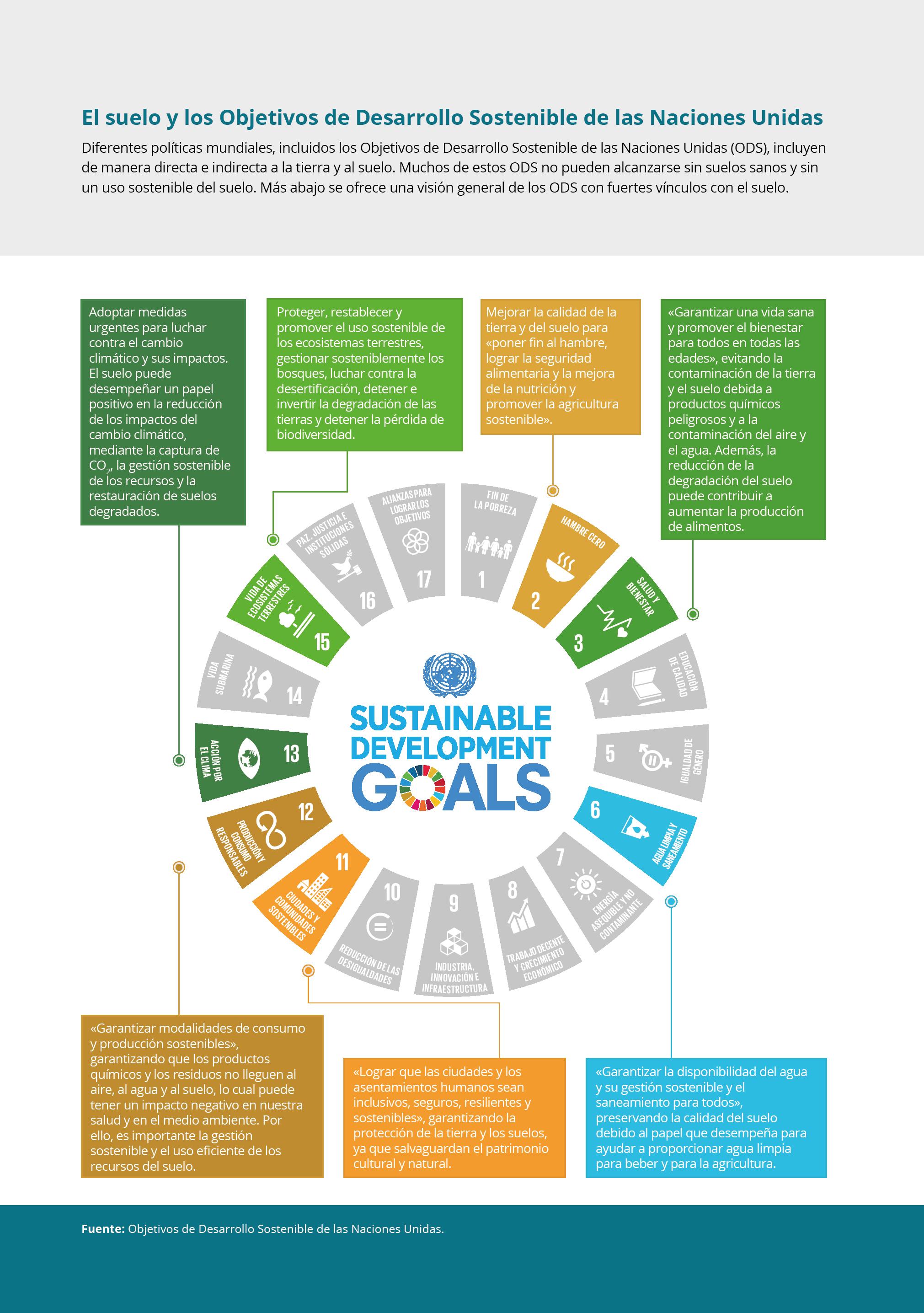 El suelo y los Objetivos de Desarrollo Sostenible de las Naciones Unidas