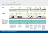 Contaminación y otras repercusiones de la agricultura en el medio ambiente