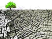 Kui kaev saab tühjaks - Kliimamuutustega kohanemine ja vesi