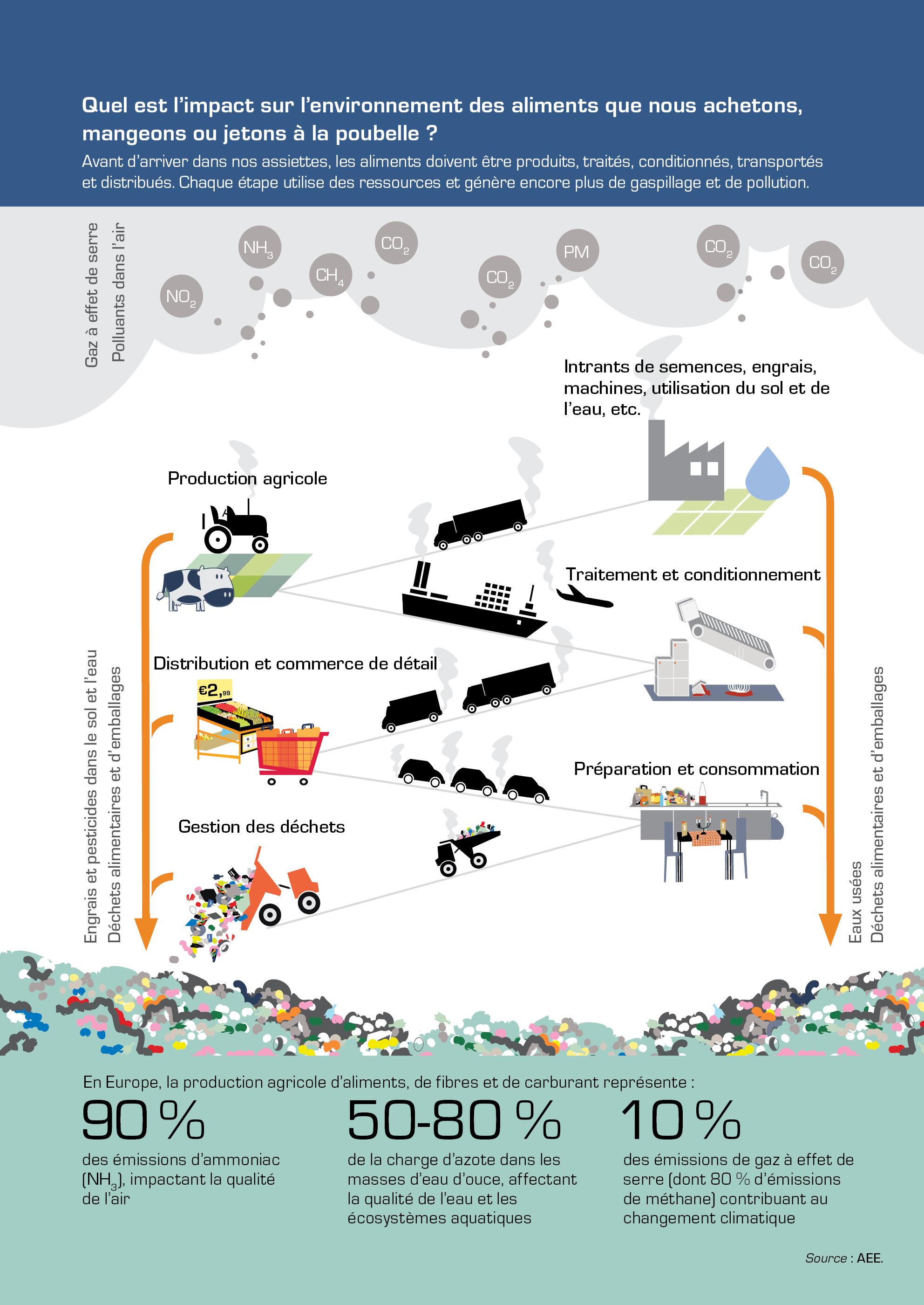 Quel est l'impact sur l'environnement des aliments que nous achetons, mangeons ou jetons à la poubelle ?