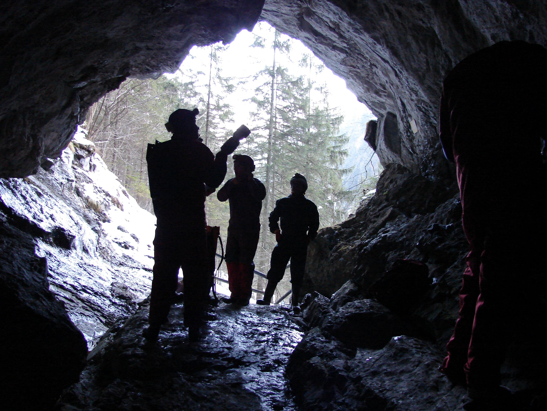 Surveyors searching for hibernating bats (Simone Pysarczuk)